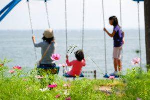 海浜公園の画像